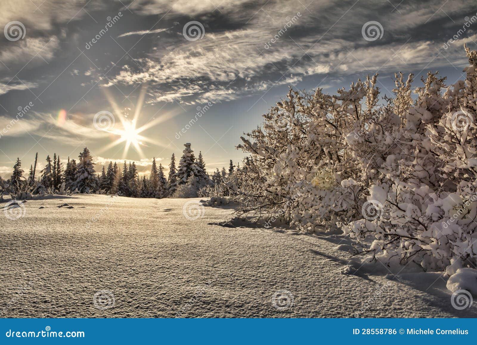 Zonnestraal met sneeuw