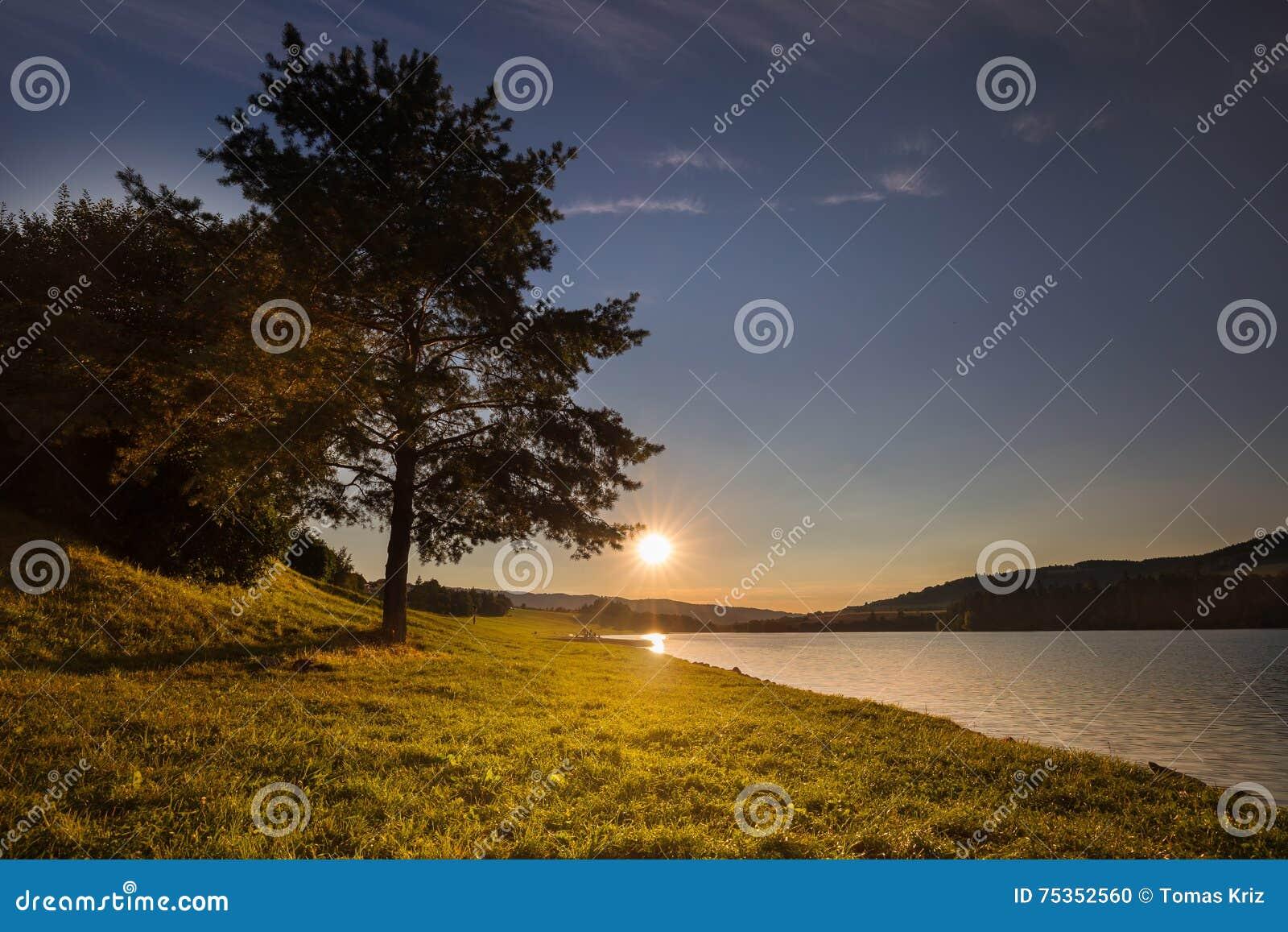 Zonsondergang en boom door de kust van water
