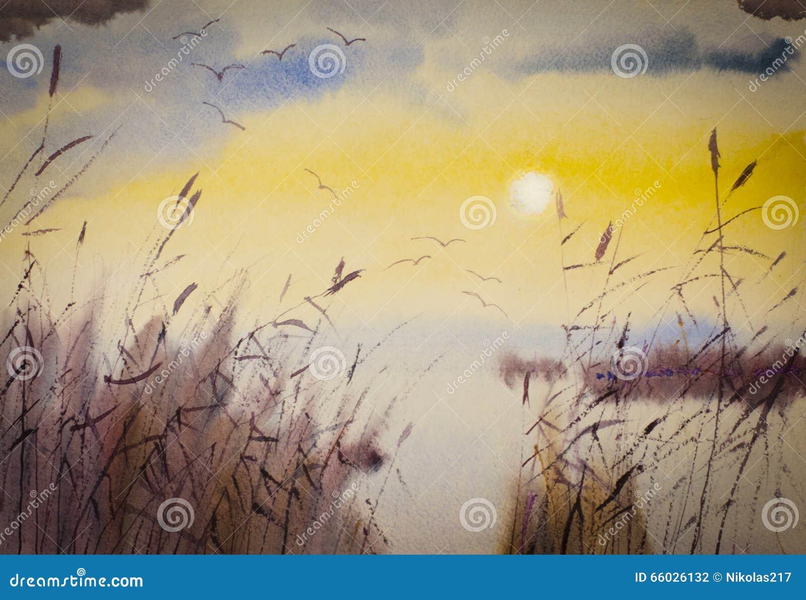 Zonsondergang en riet stock illustratie. illustratie bestaande uit