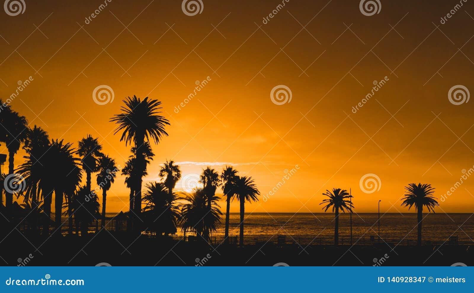 Zonsondergang, Kampenbaai, Cape Town, Zuid-Afrika