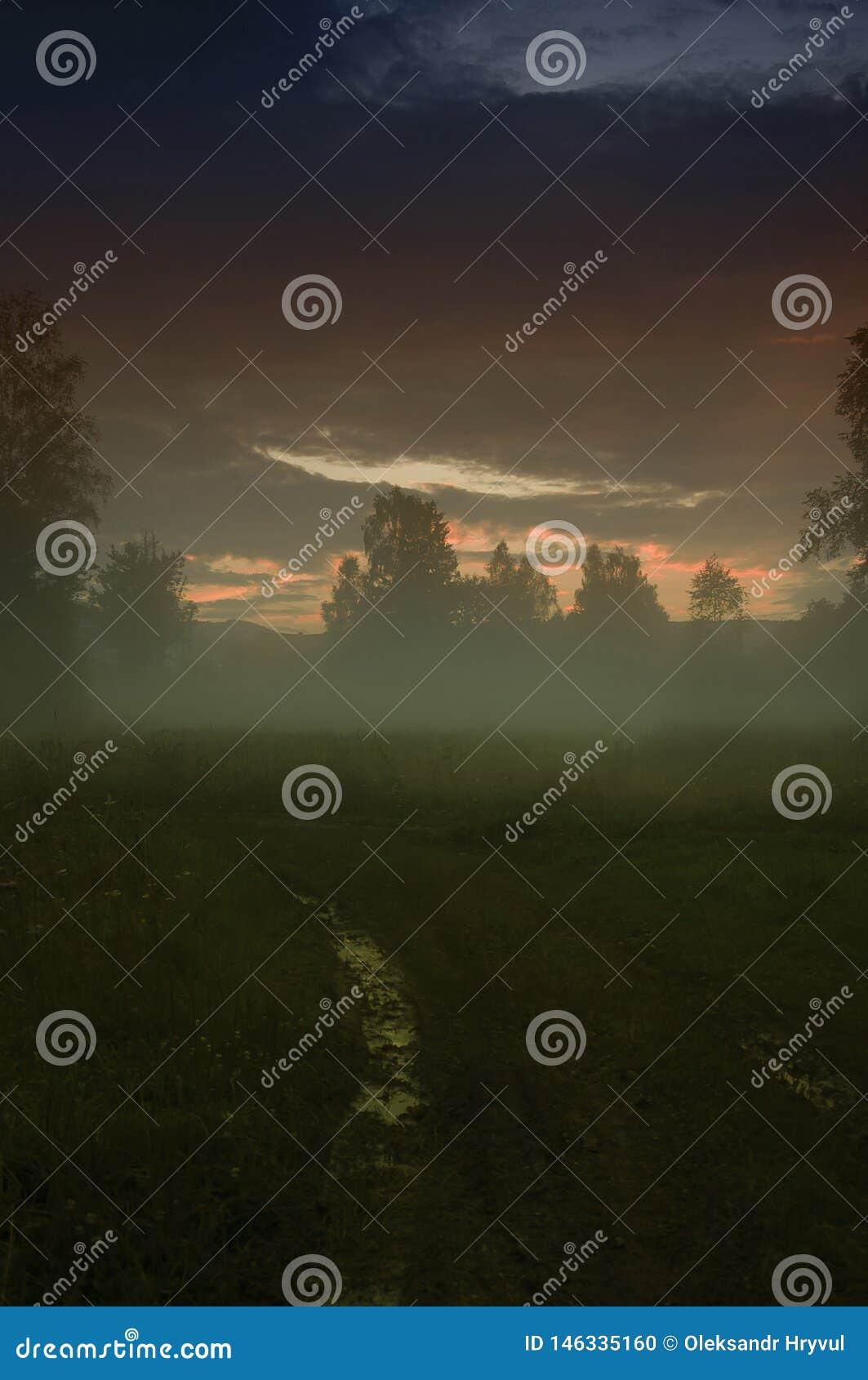 Zonsondergang Moeras Avondmist/de Mysticuslandschap van de mistverschrikking