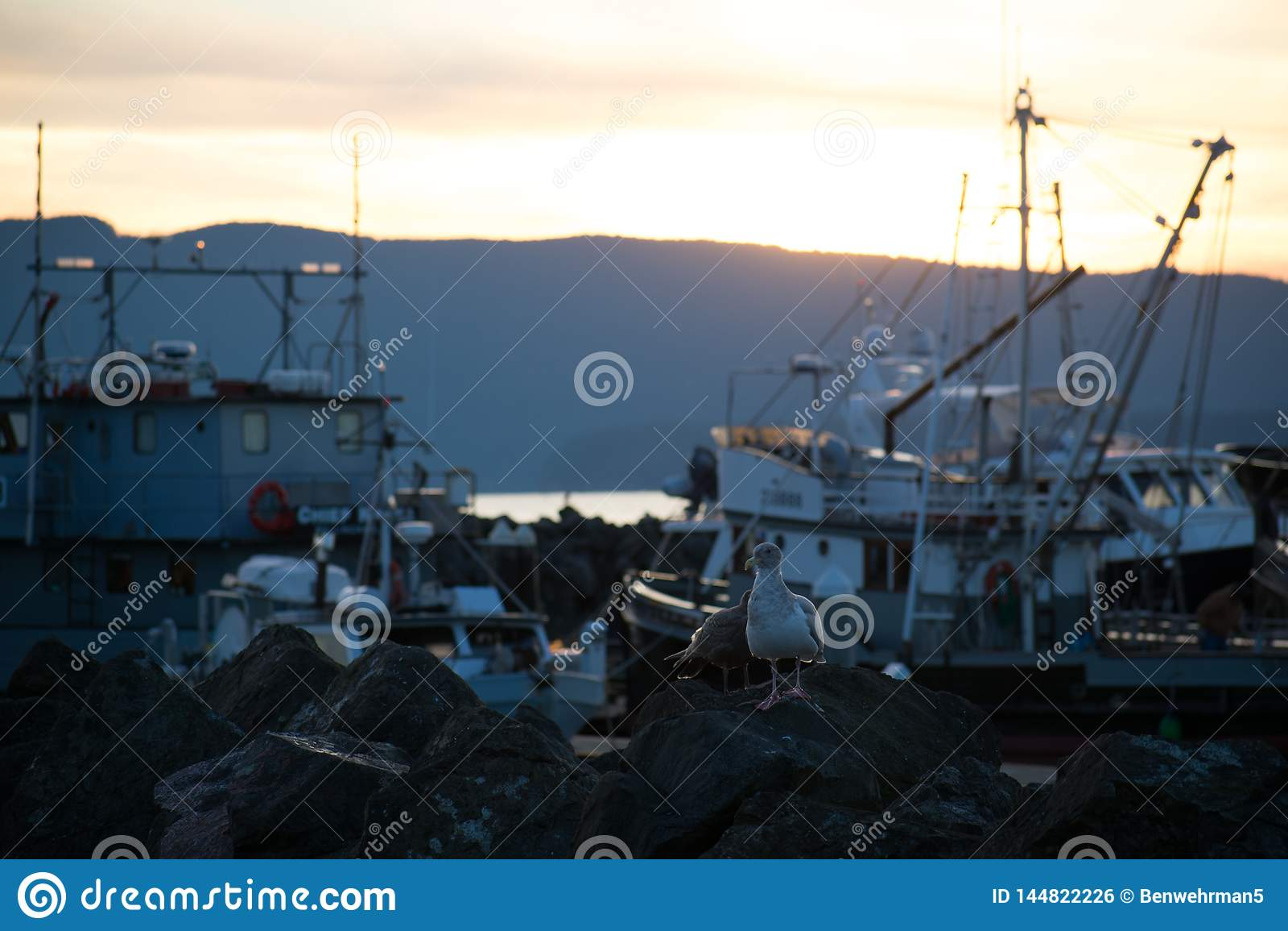 Zonsondergang op de Jachthaven