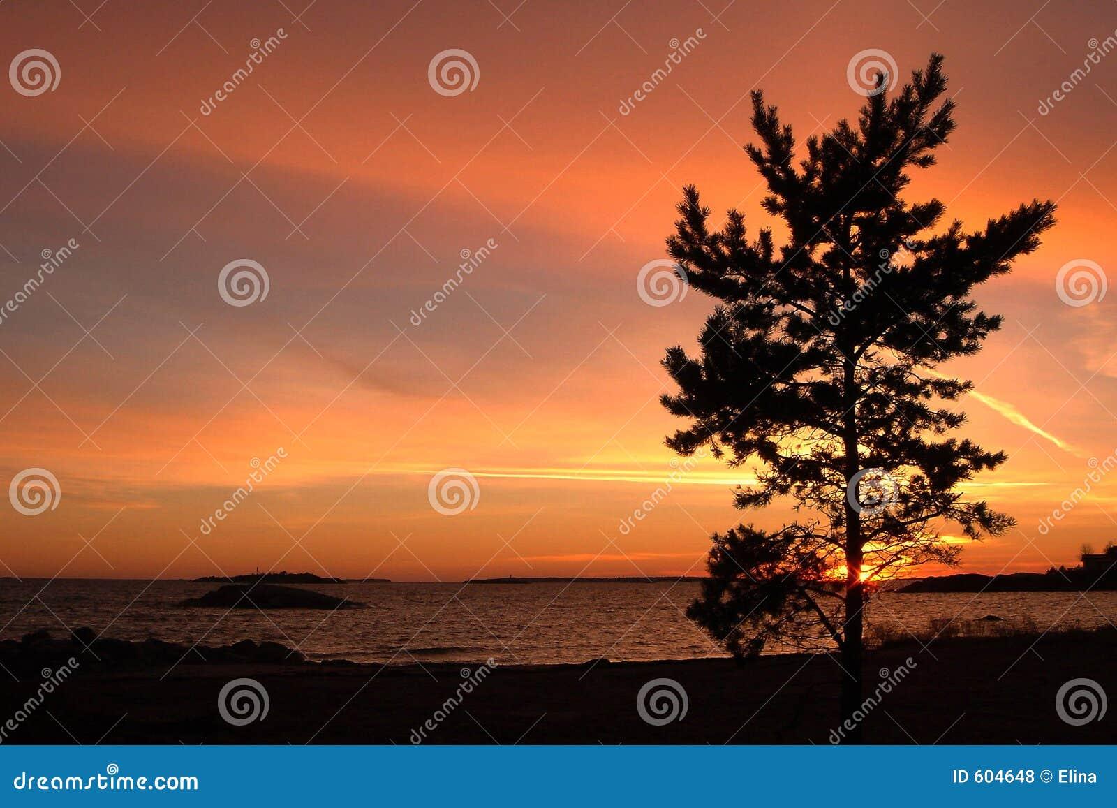Zonsondergang op Golf van Finland