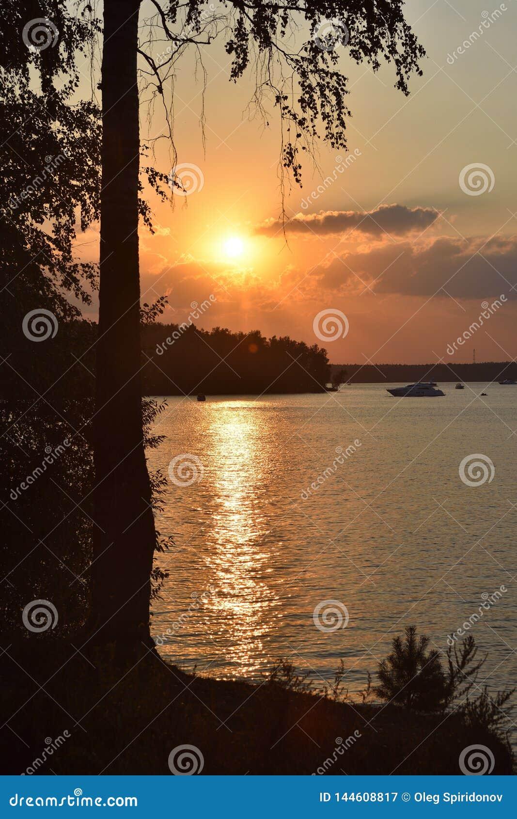 Zonsondergang op het meer, silhouet van een berk op een zonsondergang backgroun