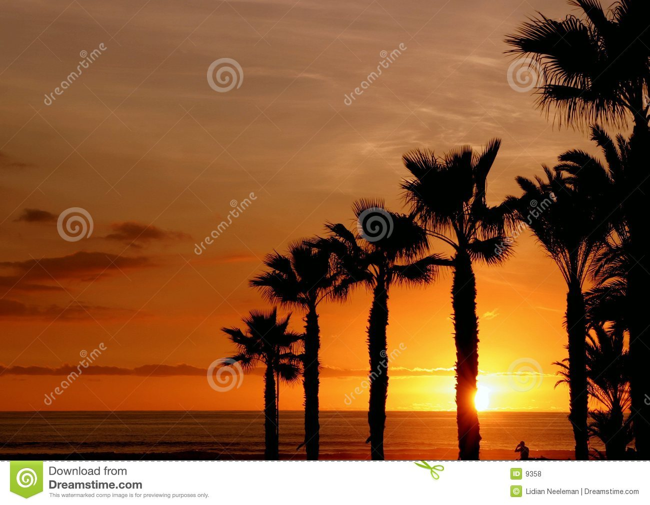 Zonsondergang op Palm Beach