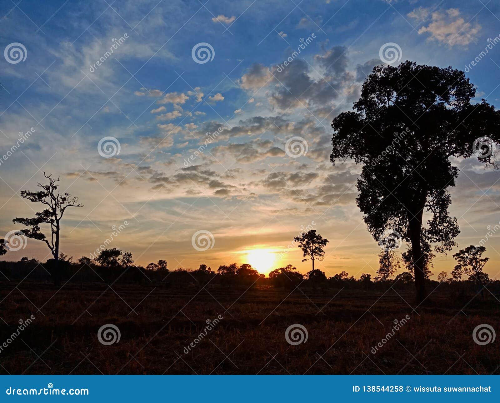 Zonsondergangmening in landbouwbedrijf