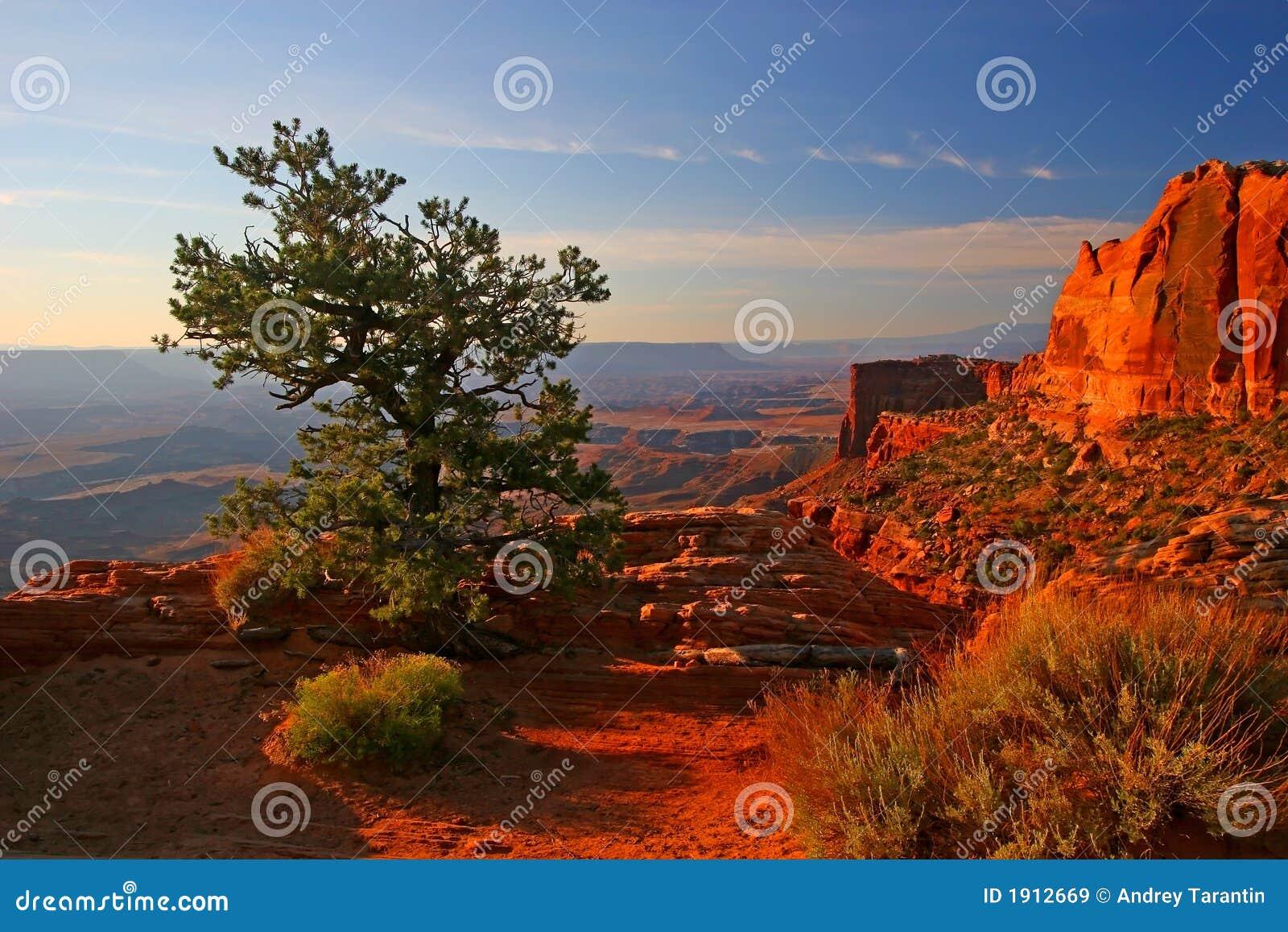 Zonsopgang in Canyonlands