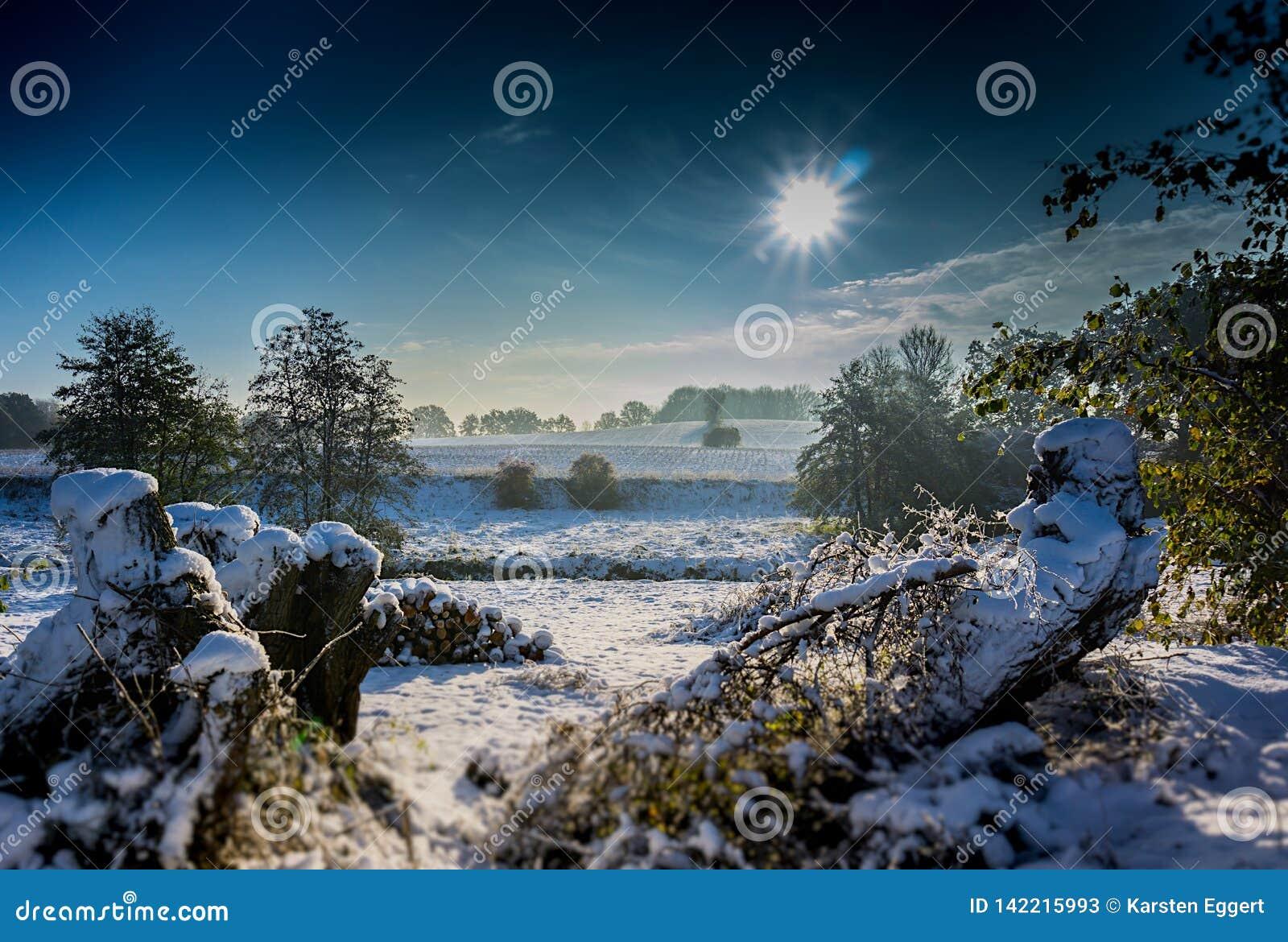 Zonsopgang in de wintersprookjesland De zon glanst op mooi landschap