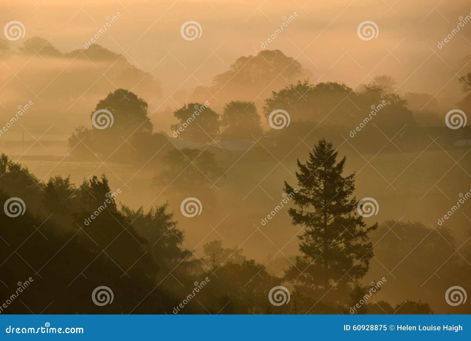 Zonsopgang op Dartmoor
