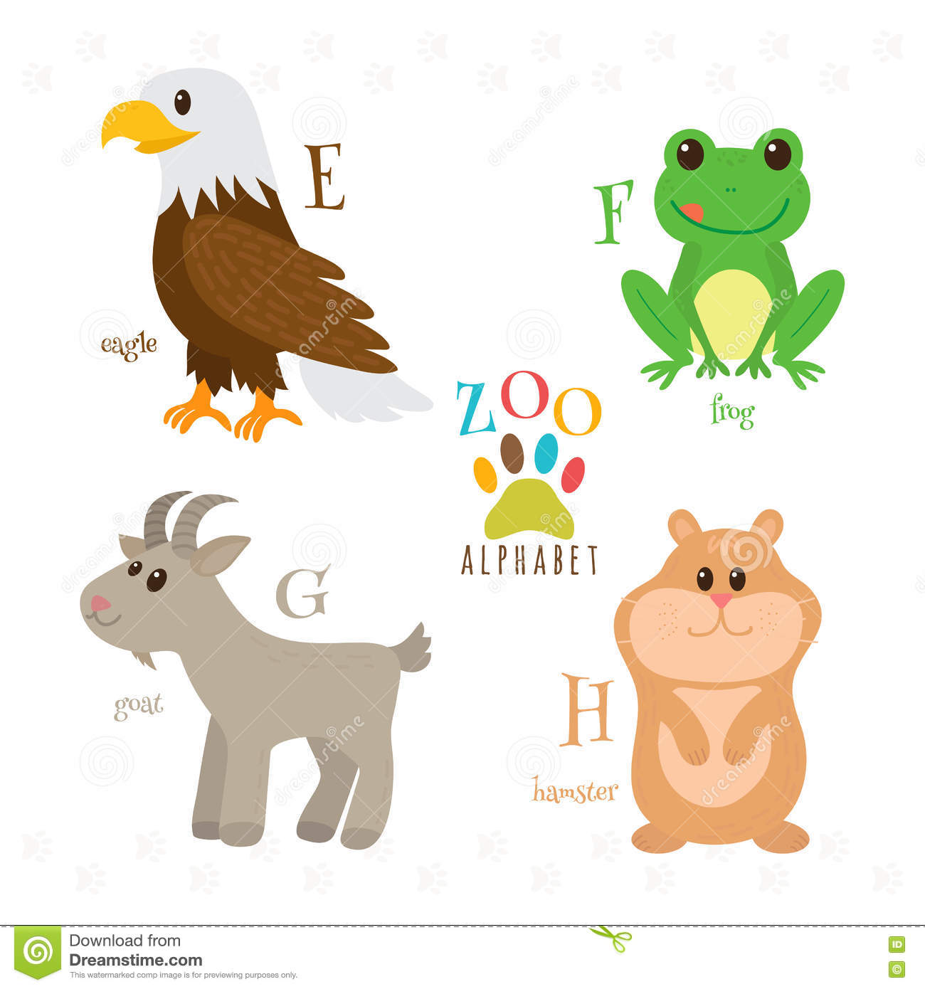Zoo Animals That Start With The Letter G