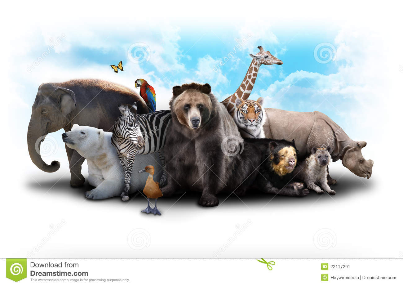 Zoo Animals Together Clipart Zoo Animal Friends Stock Image