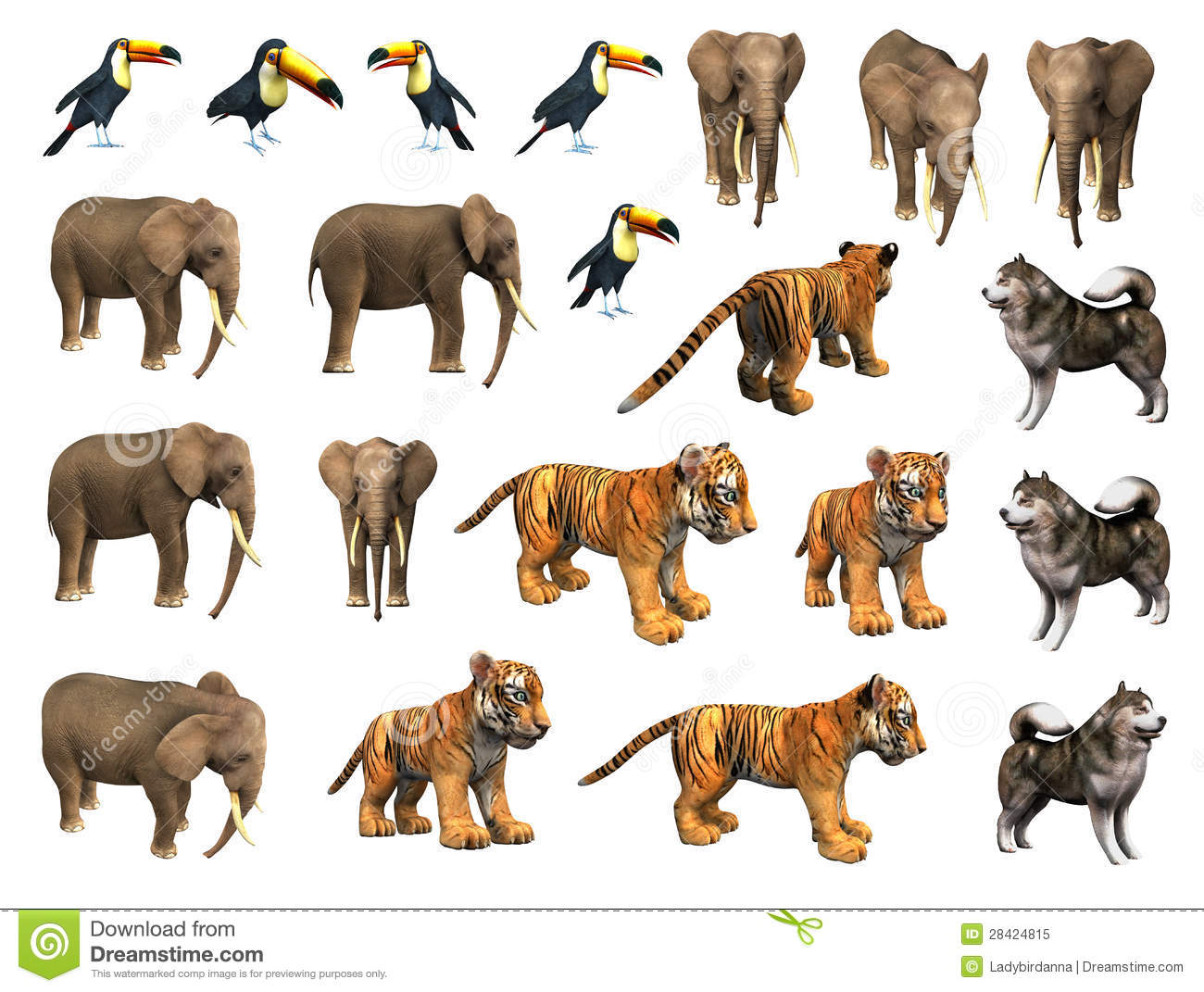 Zoo animals collection - set including elephant, tiger cub, toucan ...