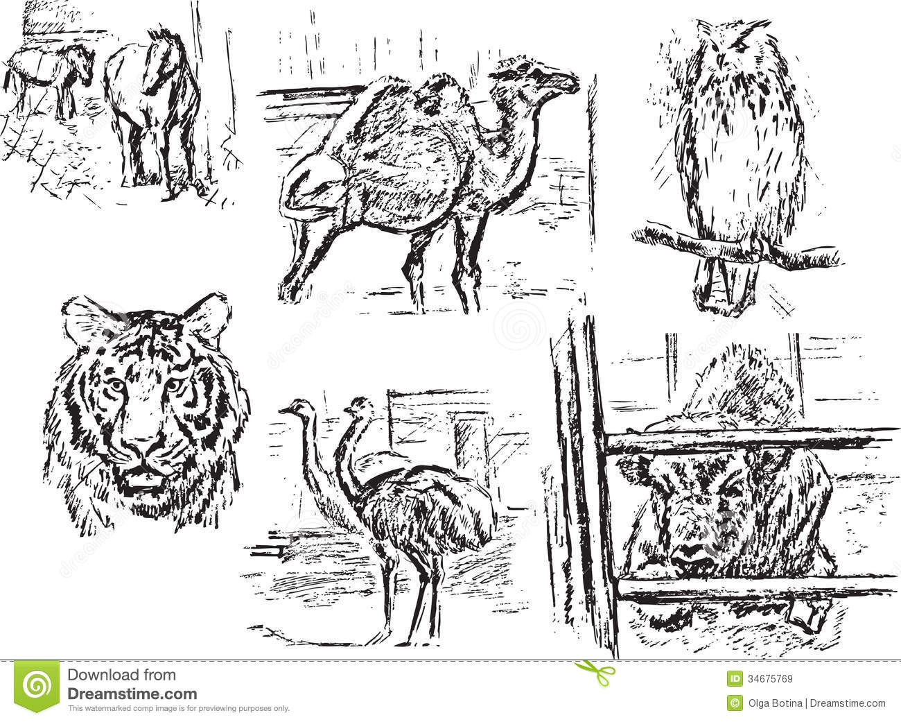 It's just a graphic of Magic Drawing Zoo Animals