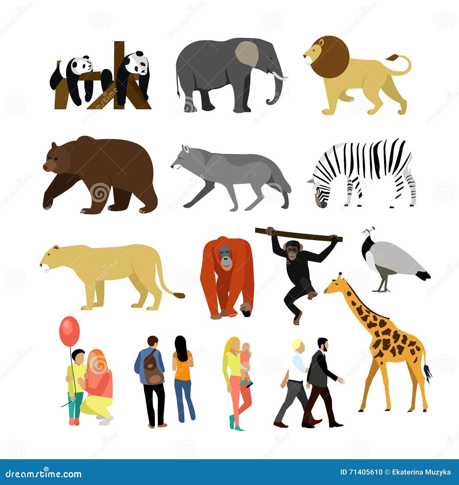 Zoo Animals Isolated On White Background. Vector Illustration. Wild African  Animals. Stock Vector - Illustration of flat, cartoon: 71405610