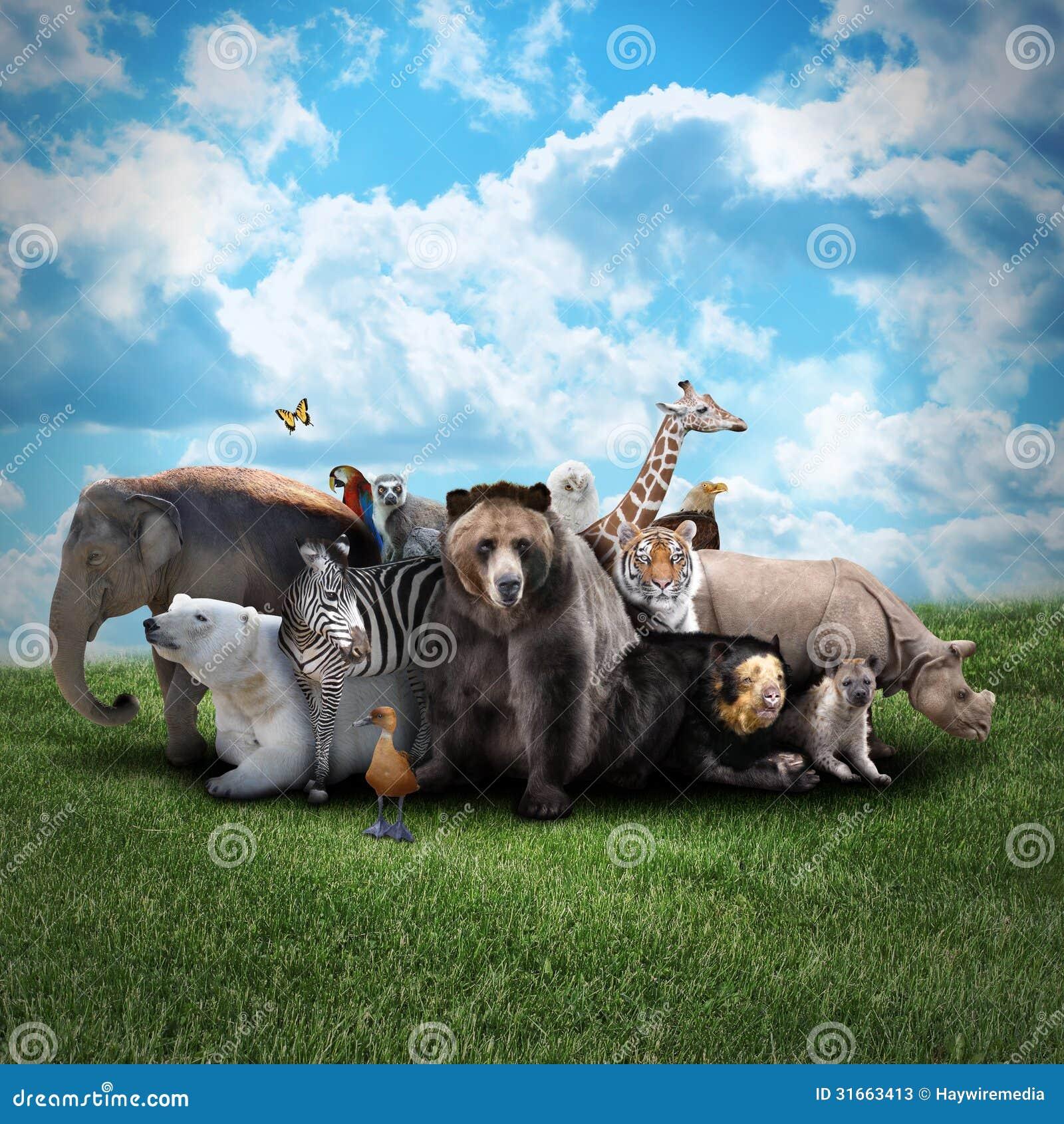 43dac7bf3c838 Zoo Animals On Nature Background Stock Image - Image of danger ...