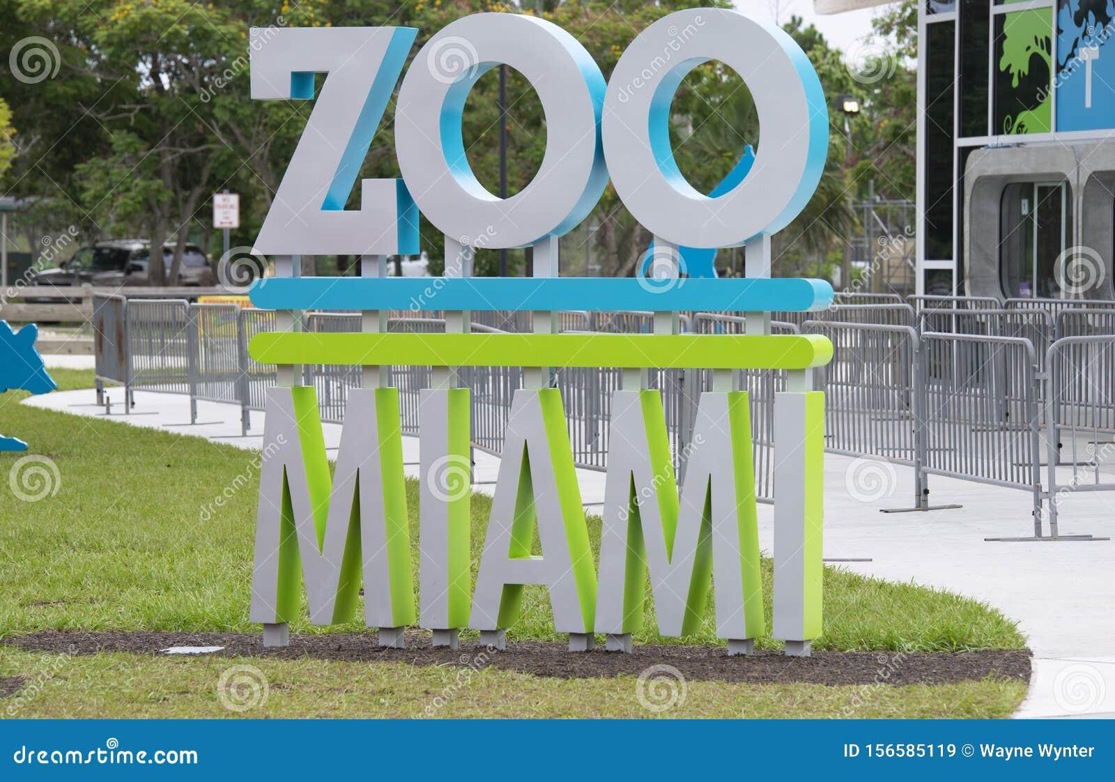 Zoo idag dating