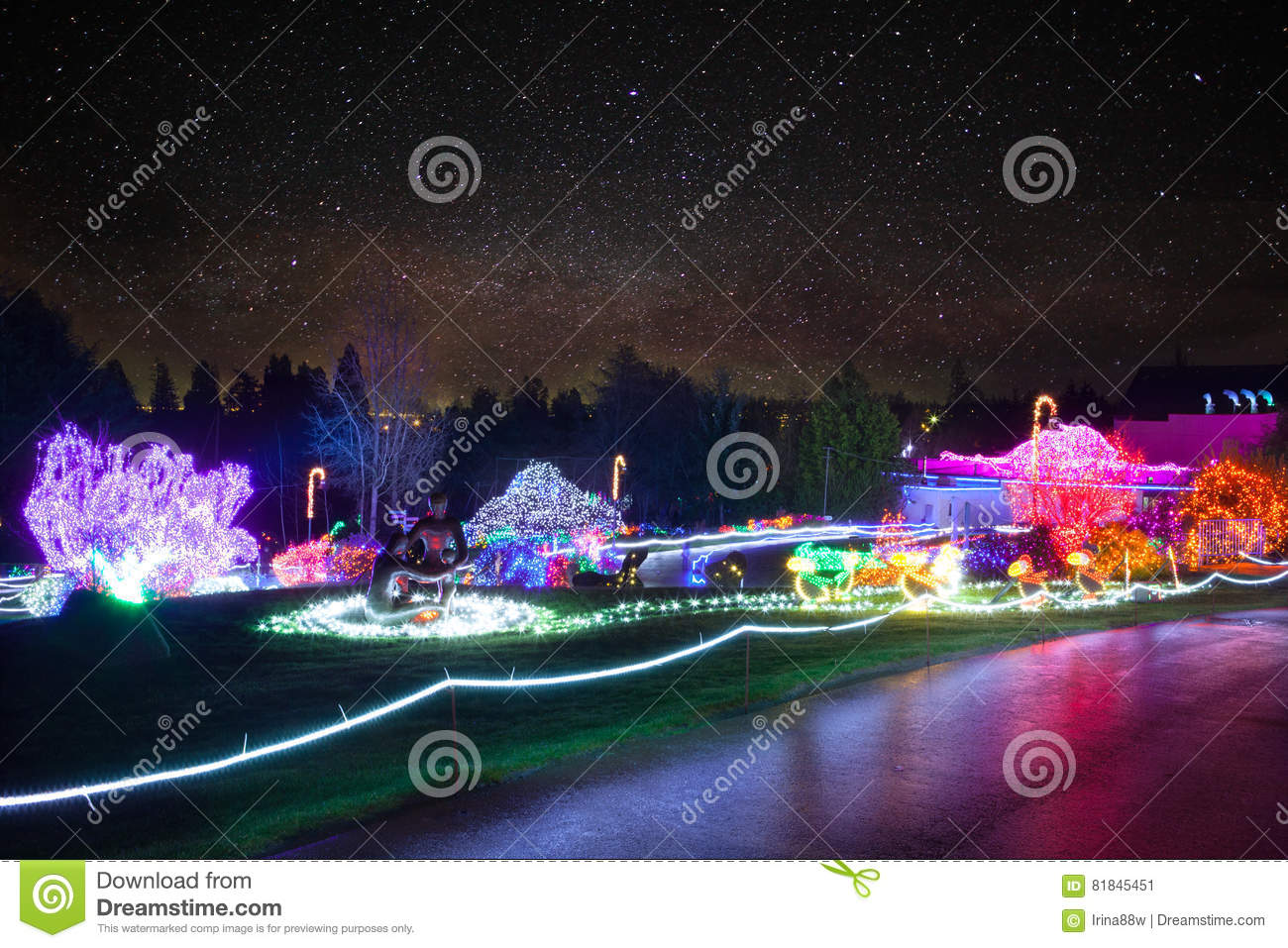 Zoolights At The Point Defiance Zoo In Tacoma Wa Stock Image Image Of Seasonal Festival 81845451