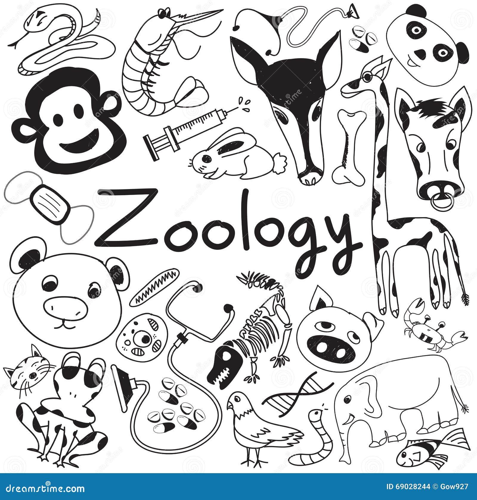 Zoologist Stock Illustrations – 46 Zoologist Stock Illustrations ...