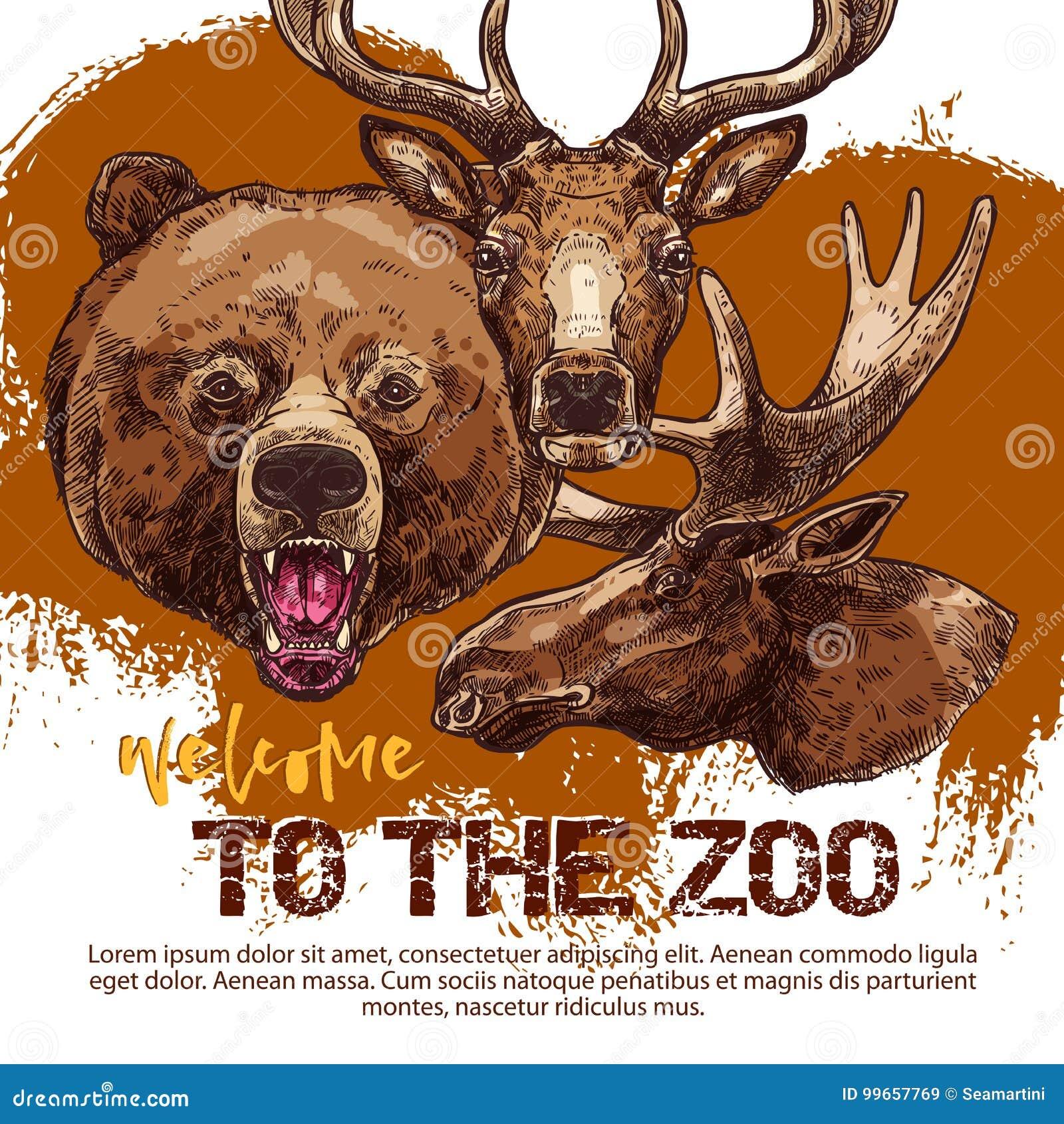 Zootierfahne mit skizziertem Bären, lieb und Elchen
