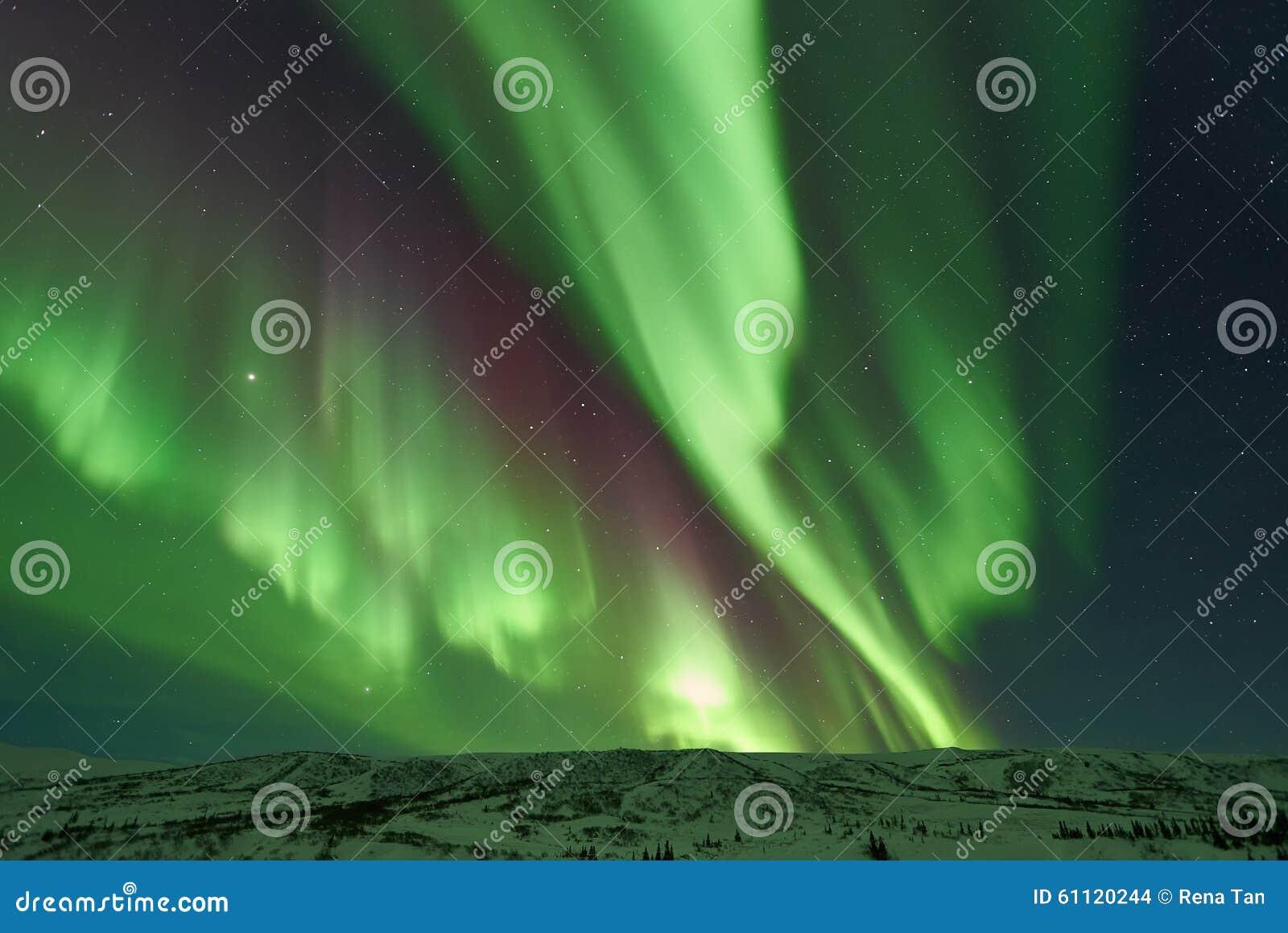 Zorza Borealis, Północni światła/