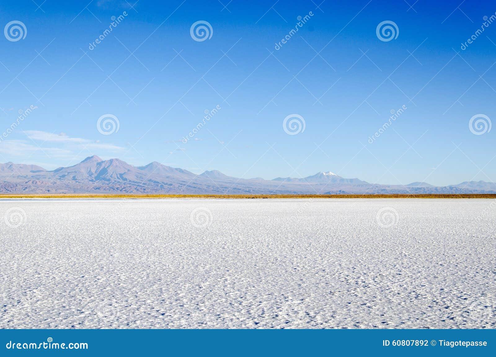 Zoute lagune met berg San Pedro de Atacama