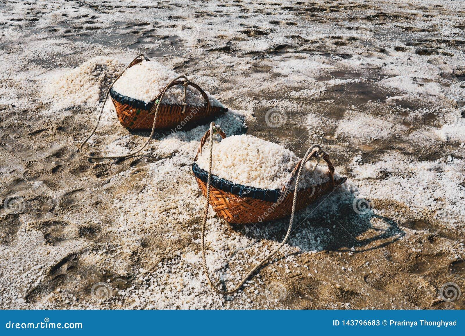 Zoute verdampingsvijver, zout in het zoute overzeese zoute landbouwbedrijf, Thailand