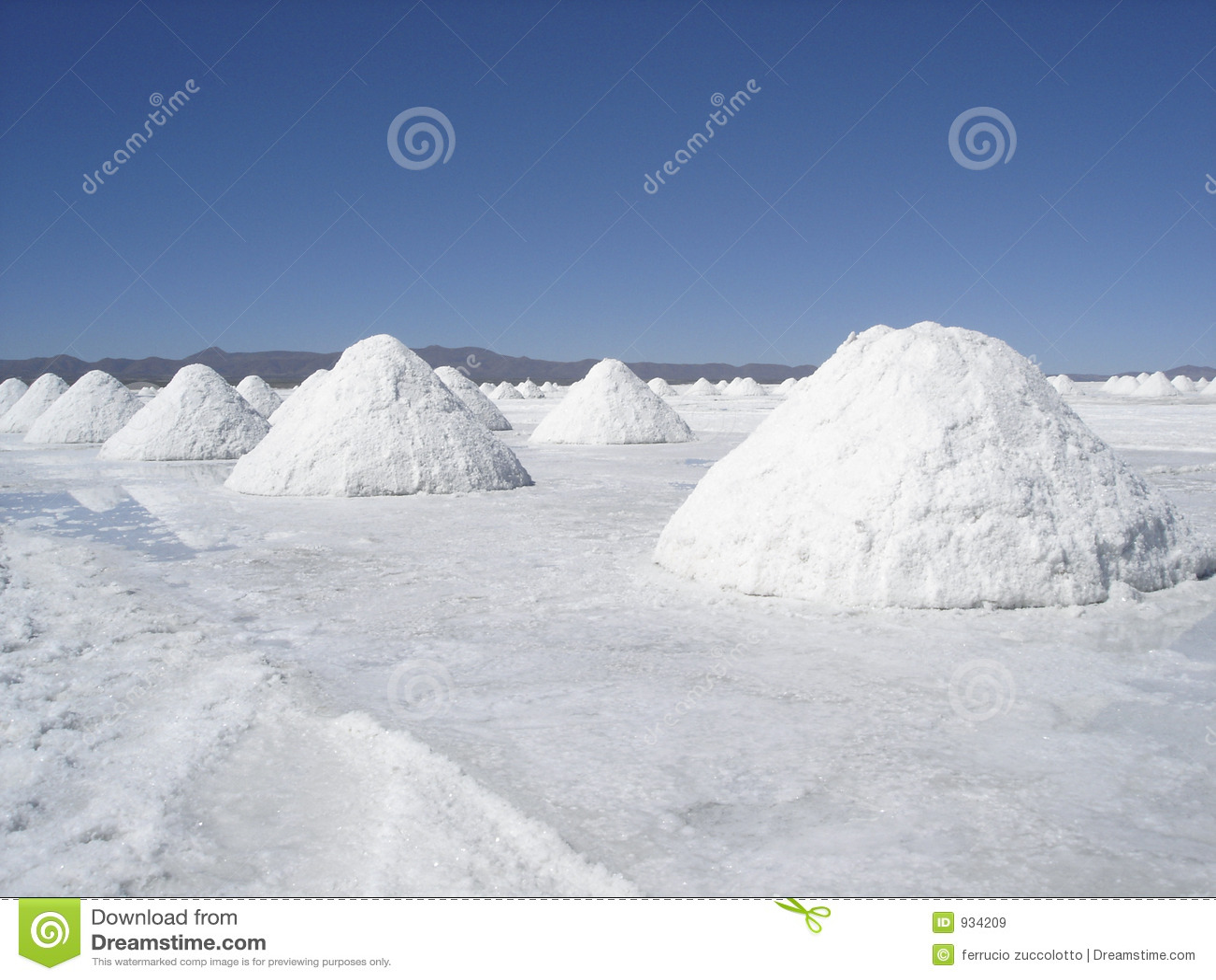 Zoute Woestijn