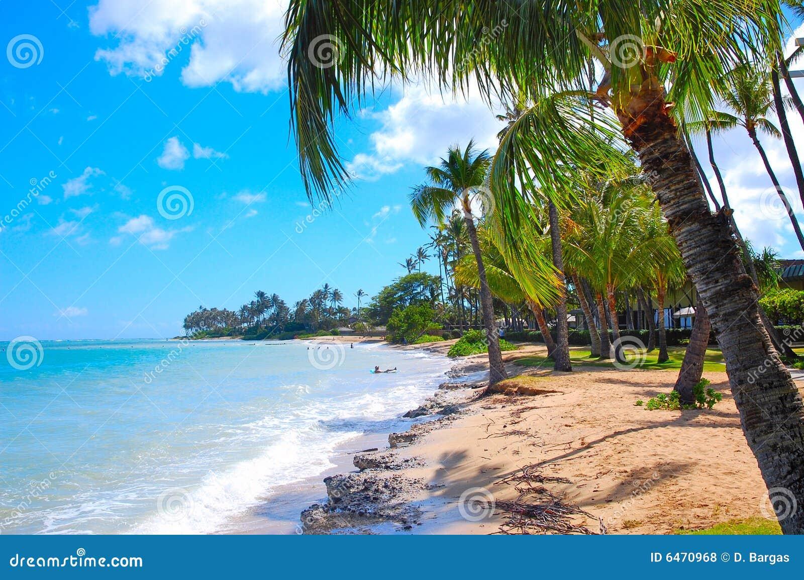 Zrelaksować na plaży
