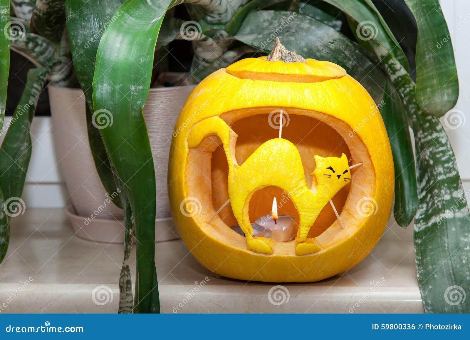 Zucca Halloween Gatto.Zucca Di Halloween Con Il Gatto Scolpito Fotografia Stock Immagine