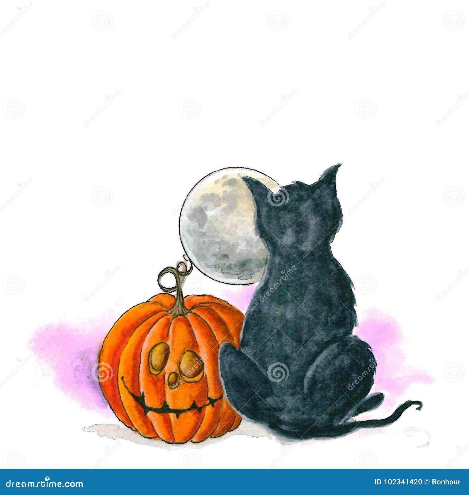 Zucca Halloween Gatto.Zucca Di Halloween Con Un Gatto E La Luna Illustrazione Di Stock