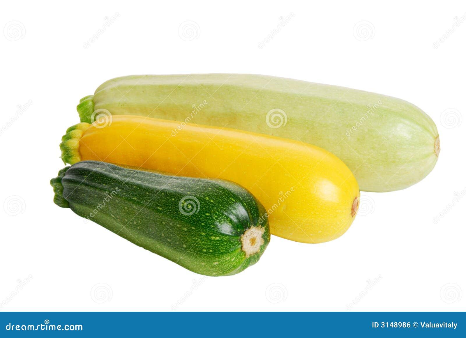 Zucca di zucchino fresca tre su w