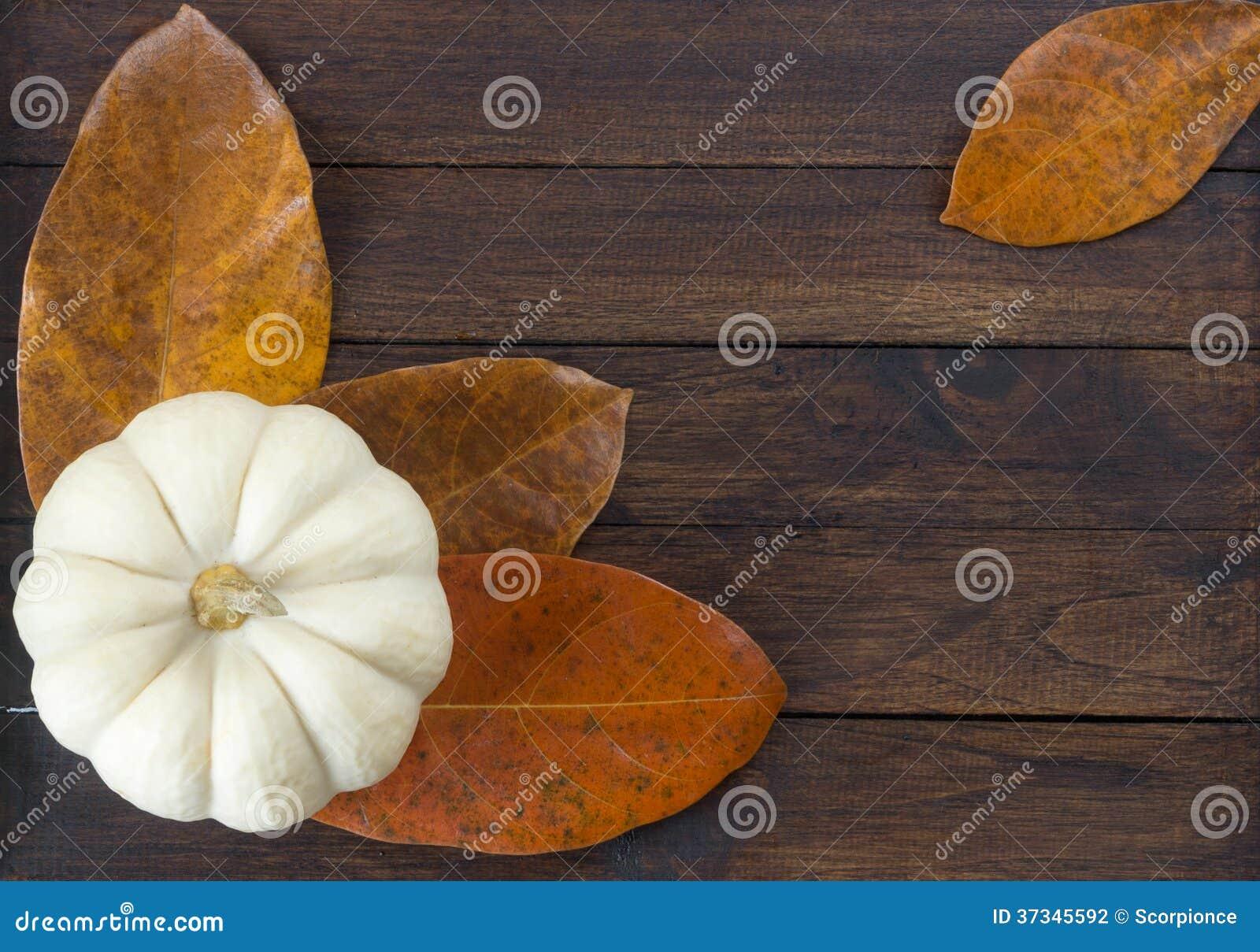 Zucca su fondo di legno