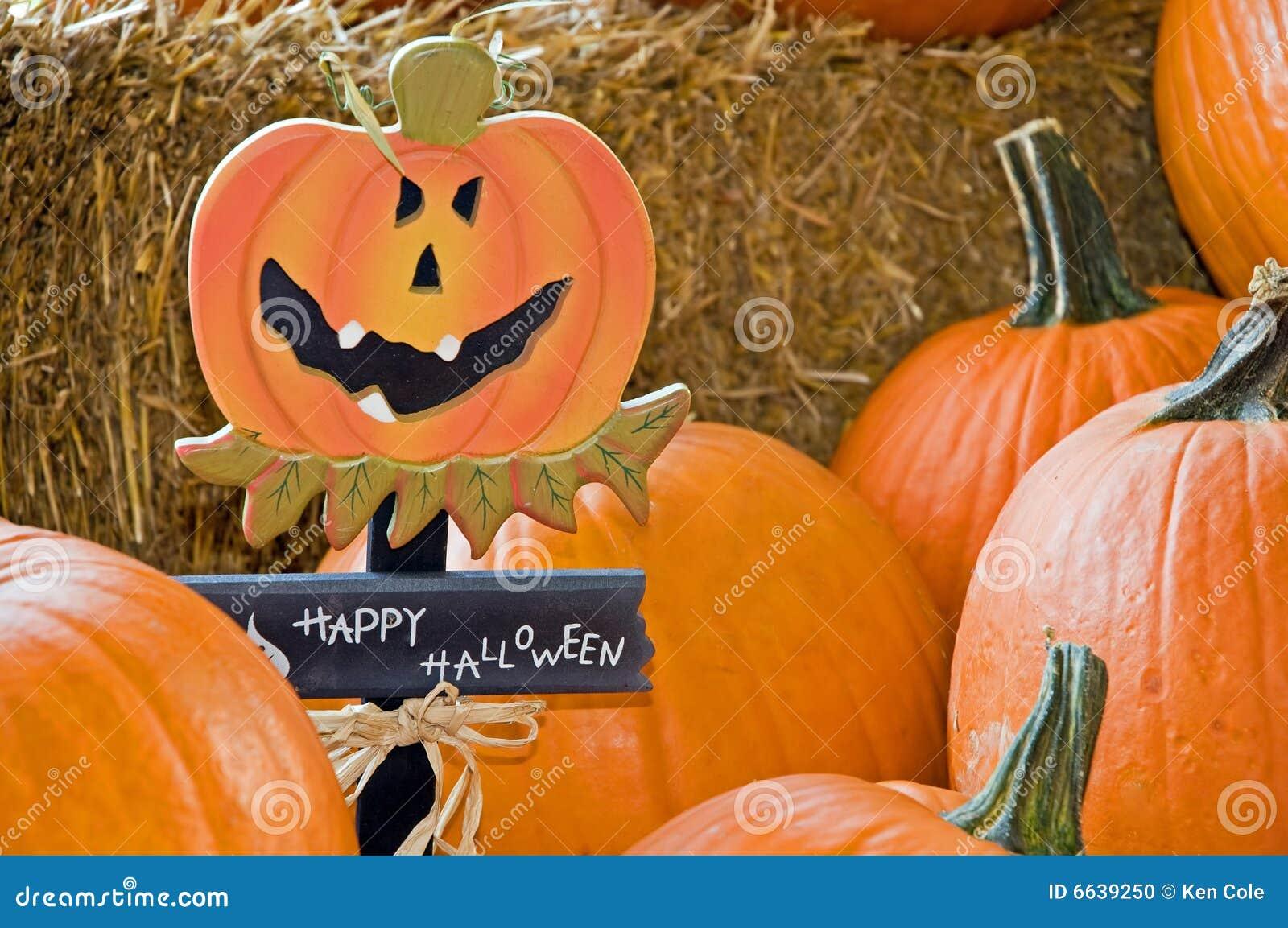 Zucche di Halloween su fieno