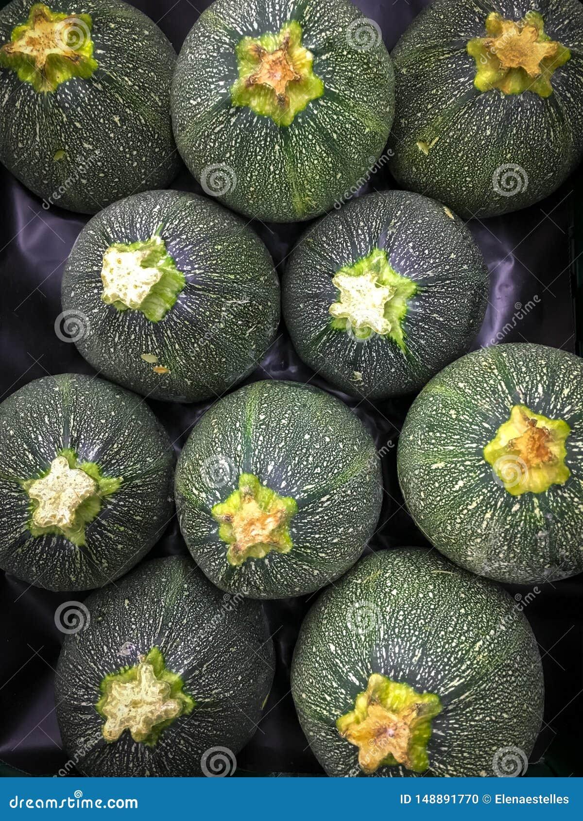 Zucchini rotondo dalla Spagna