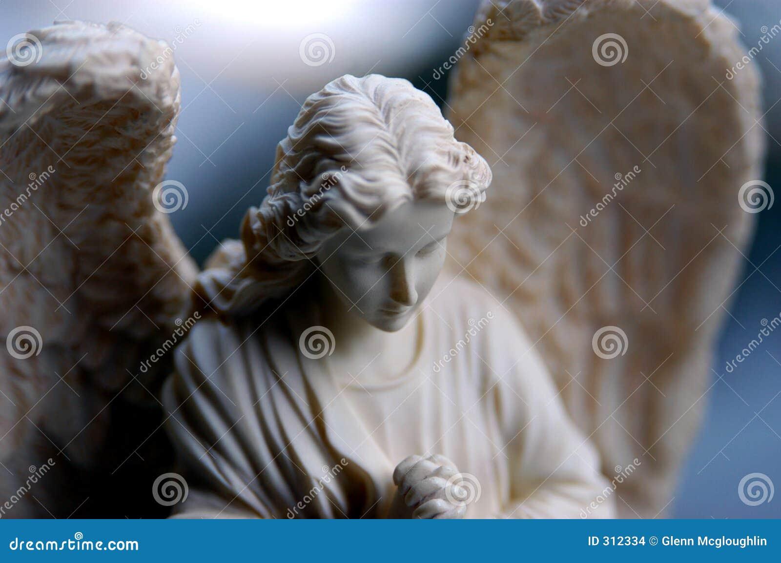 Zupy z raków anioła