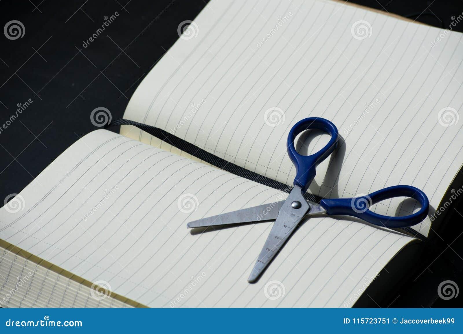 Zurück zu Schulanmerkungsblock Scissors Notizbuch blaues Stahlmetallsilber
