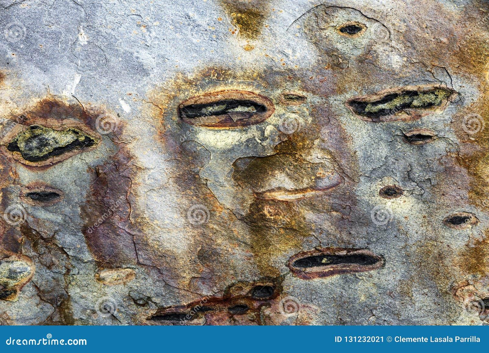 Zusammenfassungsbeschaffenheits-Steinhintergrund mit ursprünglichen Formen