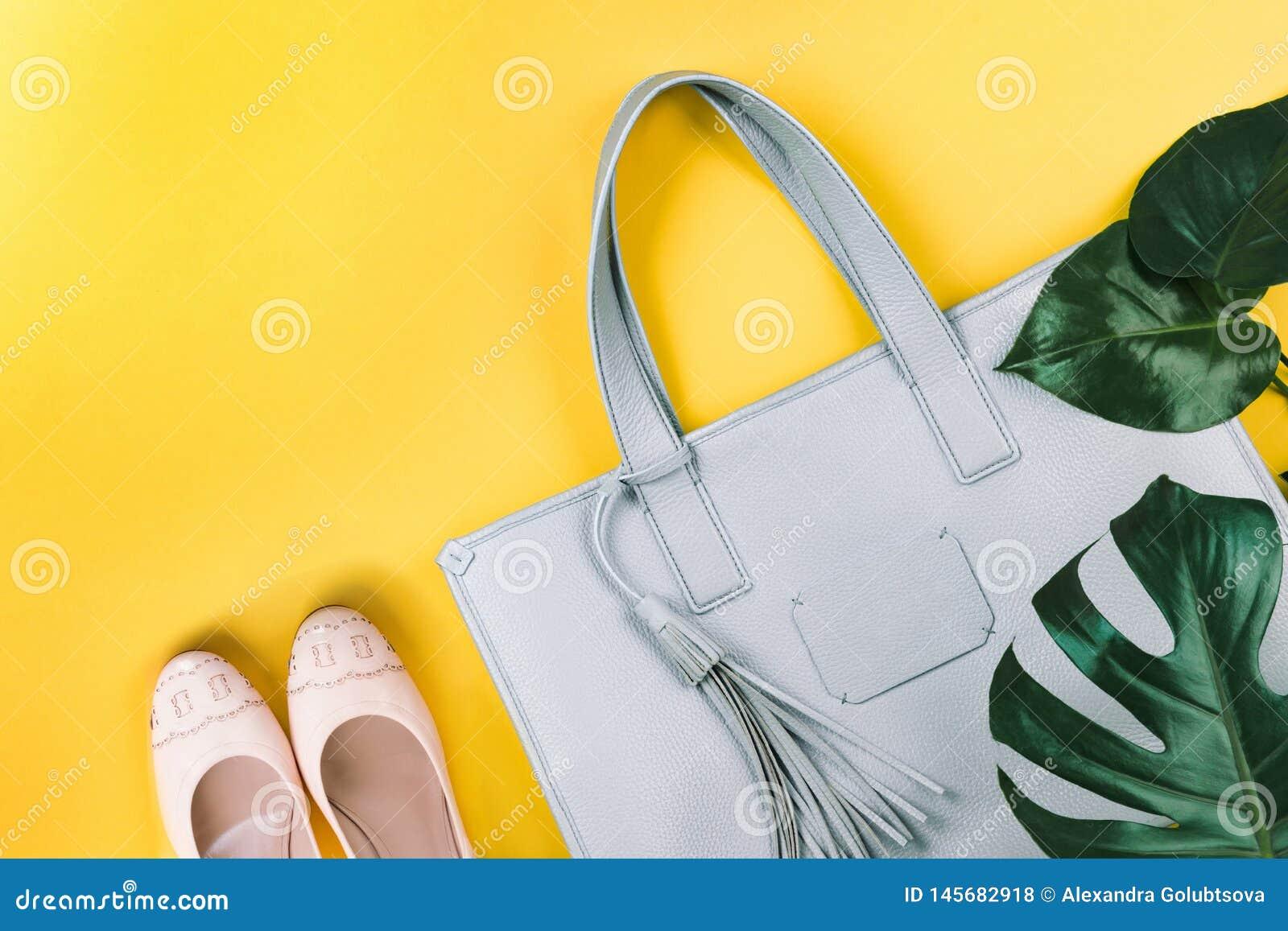 Zusammensetzung der weiblichen Handtasche, der Schuhe und des gr?nen Blattes