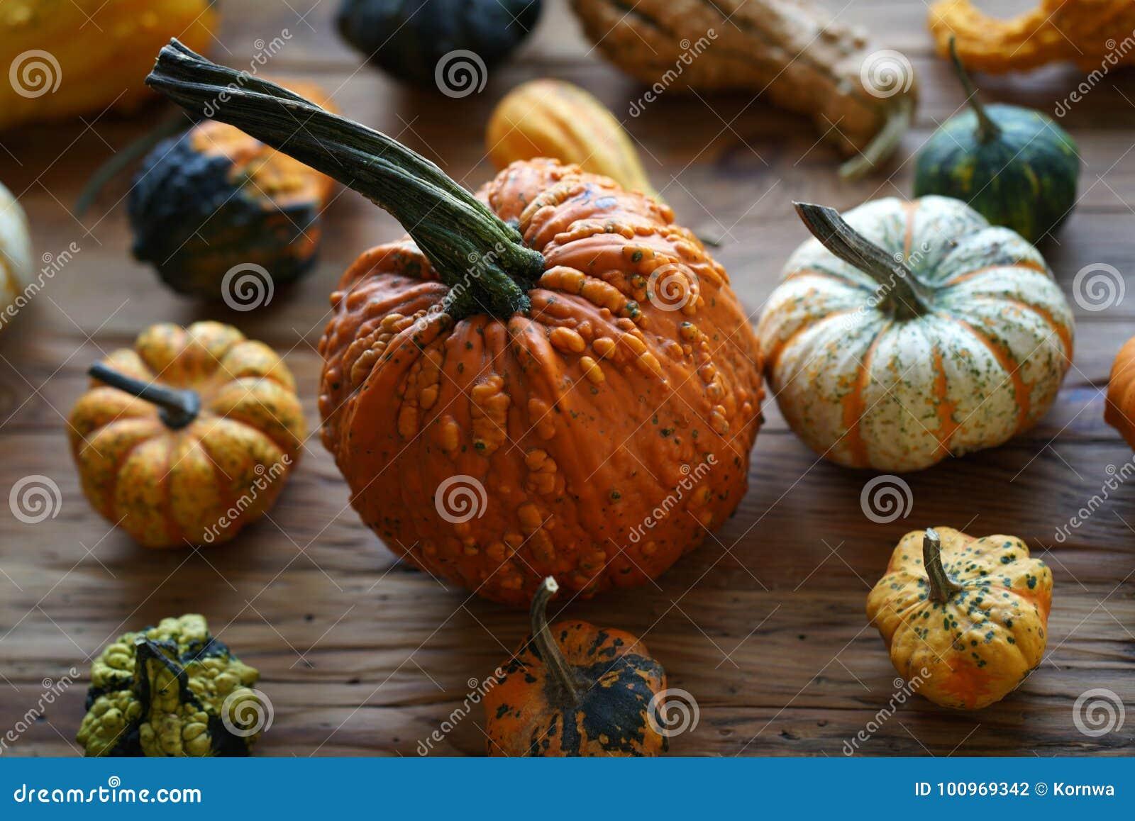 Zusammensetzung mit Halloween-Kürbisen