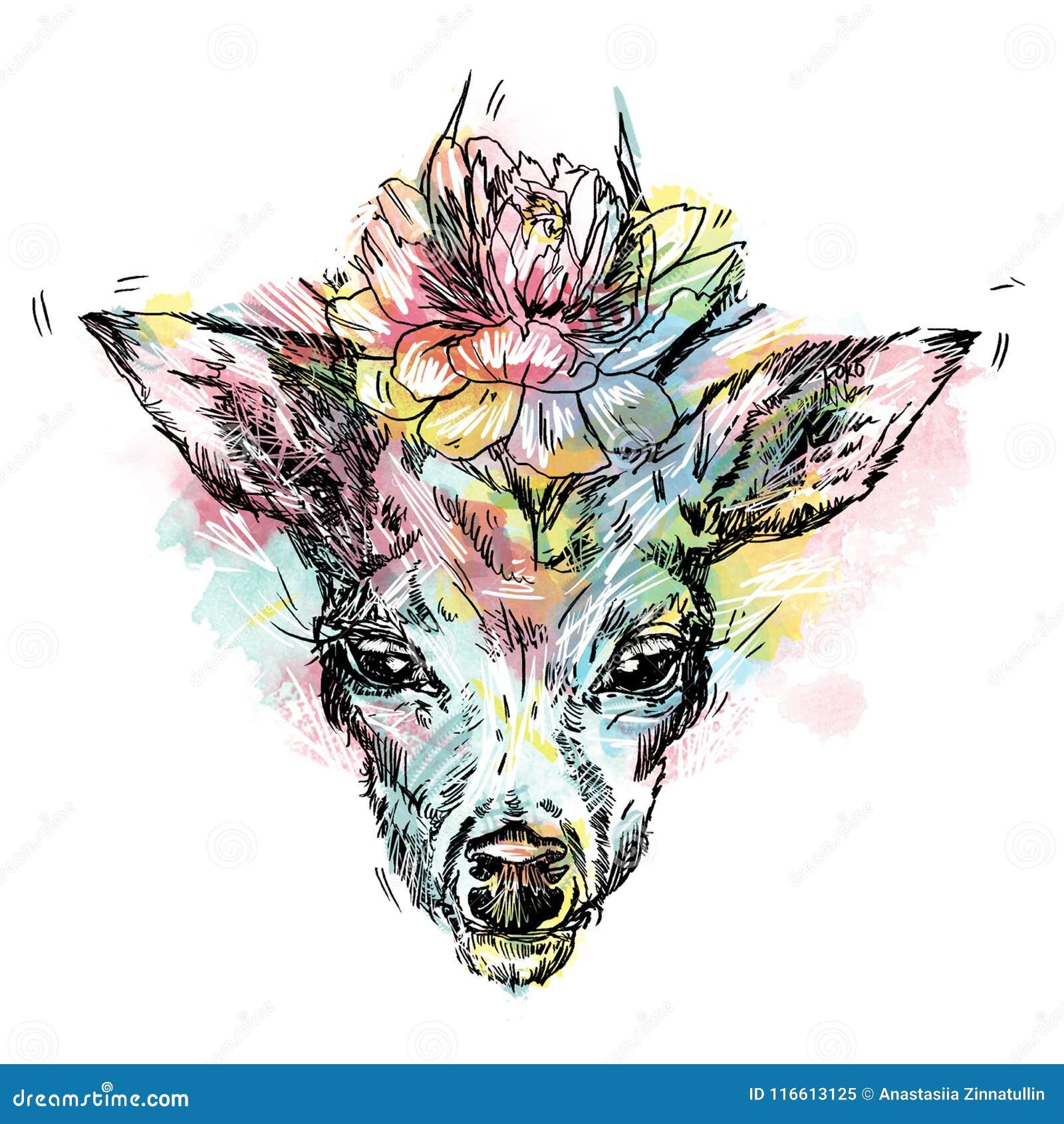 Zwart die silhouet van herten` s hoofd met geweitakken op witte achtergrond worden geïsoleerd