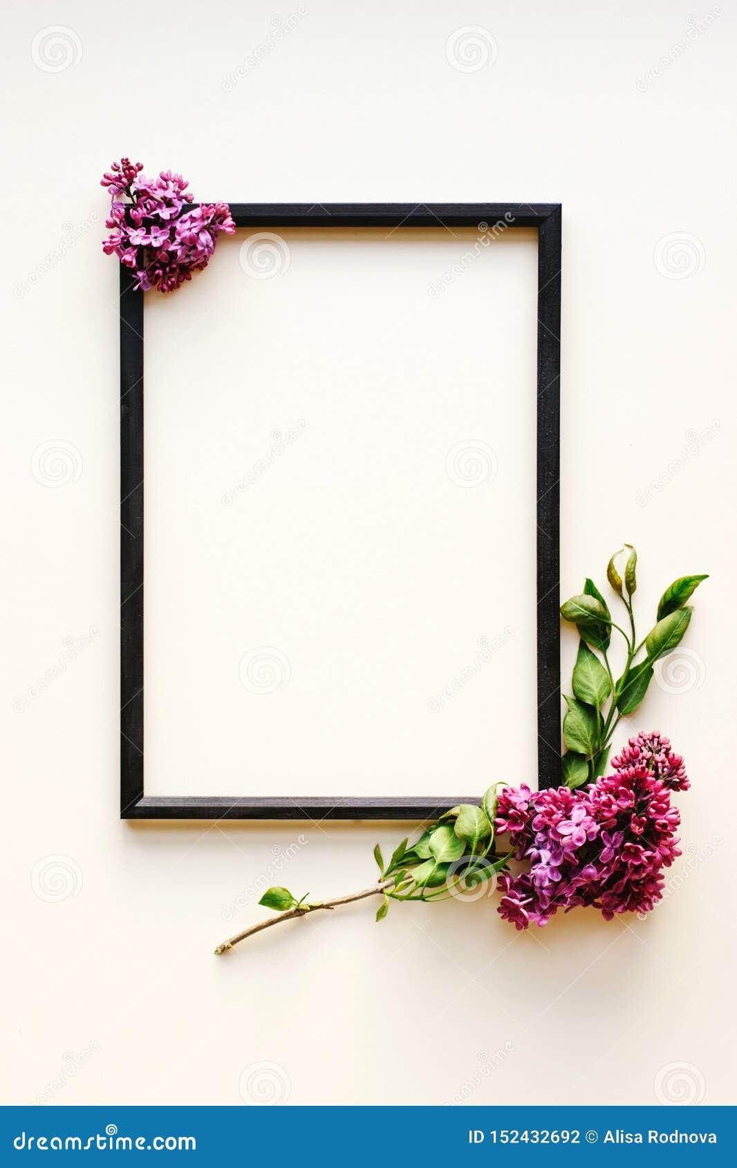 Zwart kader, lilac bloemen op witte achtergrond