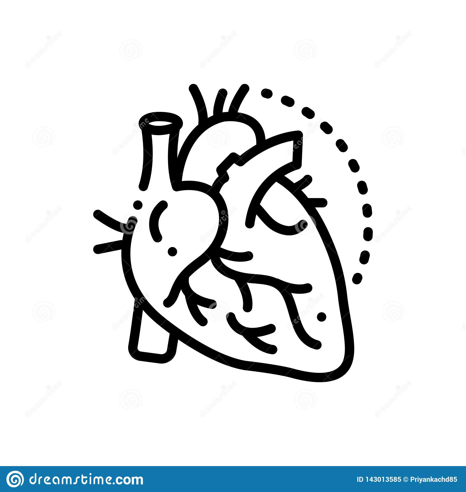 Zwart lijnpictogram voor Slagaders, aders en hart