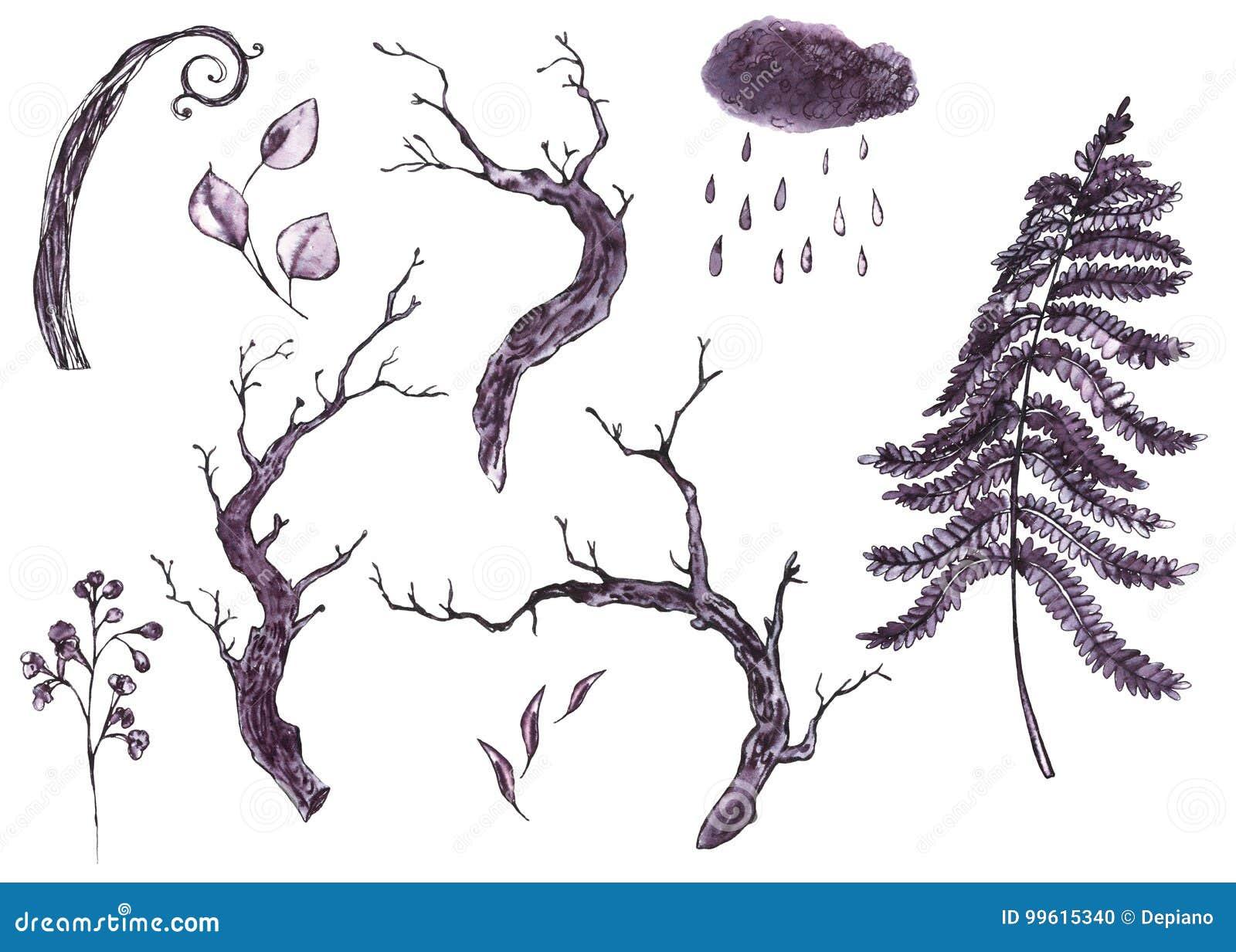 Zwart-wit waterverf natuurlijke reeks droge boomtakken, bladeren,