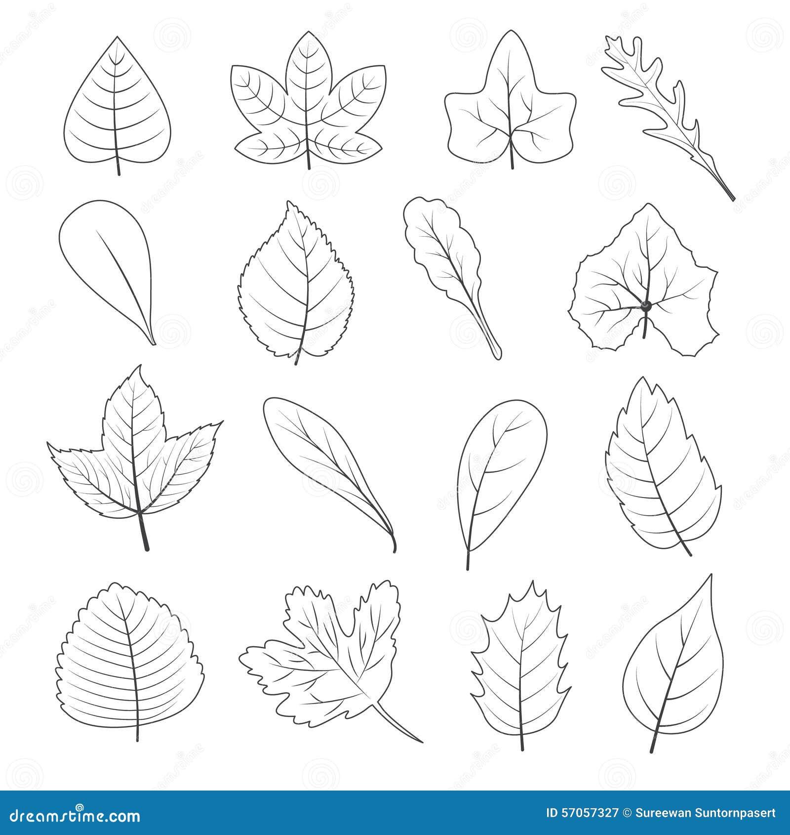 Zwart-witte het Pictogramreeks van de Bladerenvorm