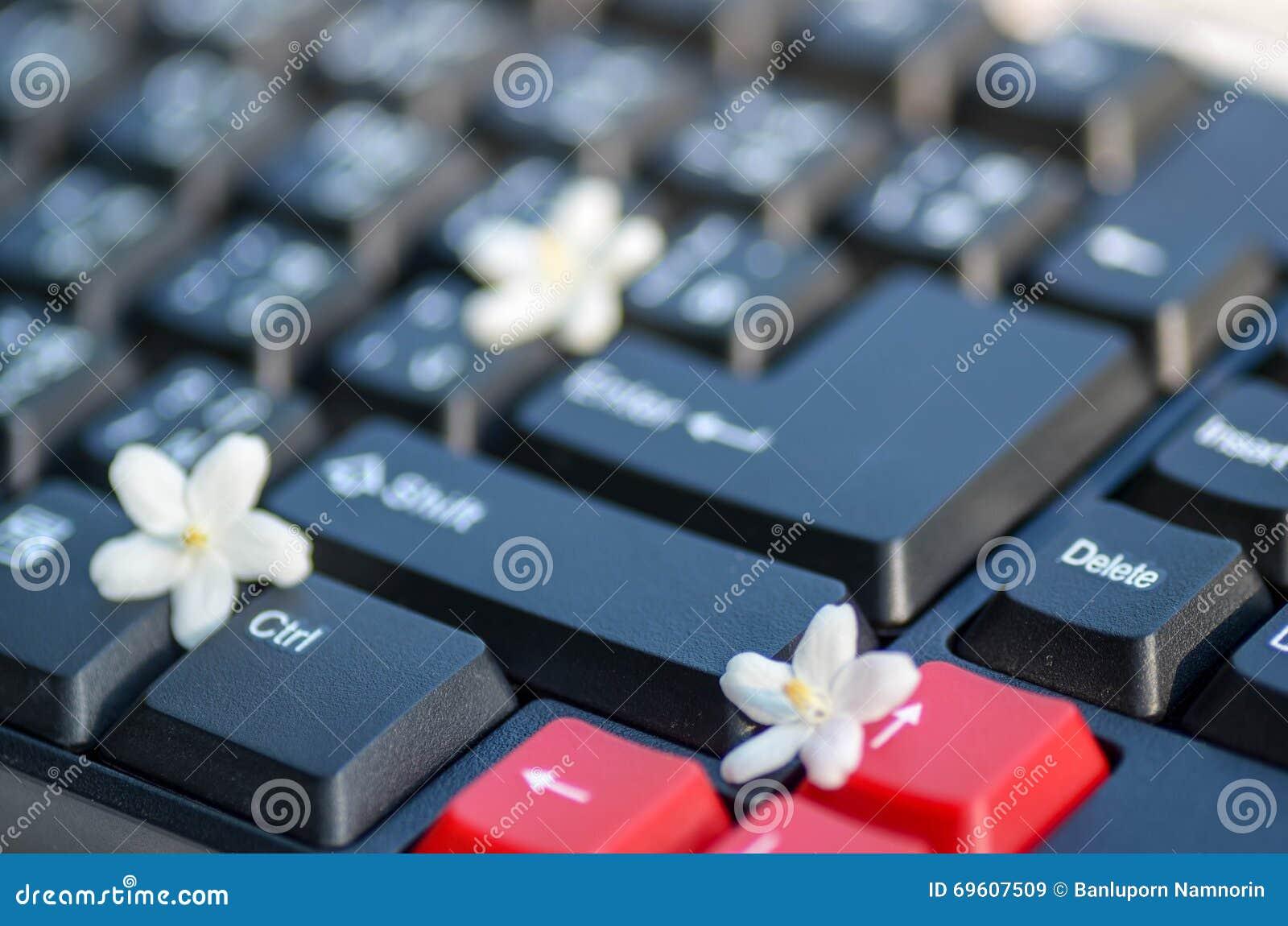 Zwart-witte toetsenbordsleutel met uiterst kleine witte bloem