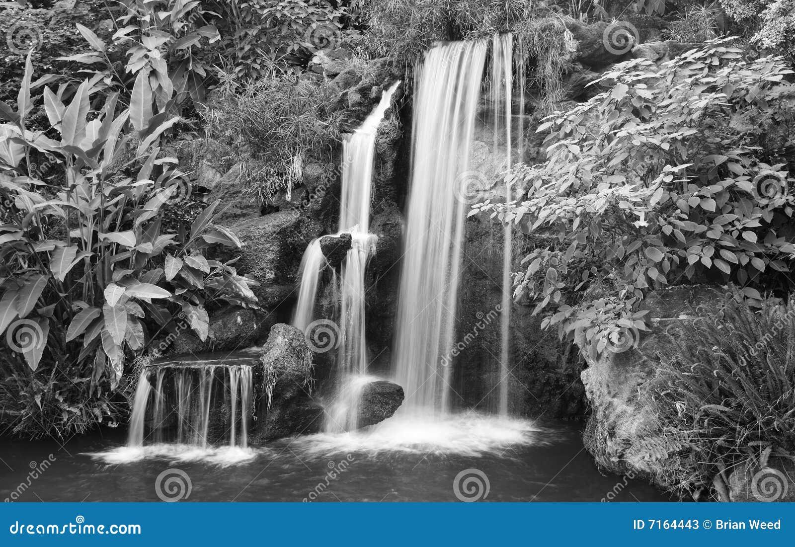 Zwart-witte Waterval