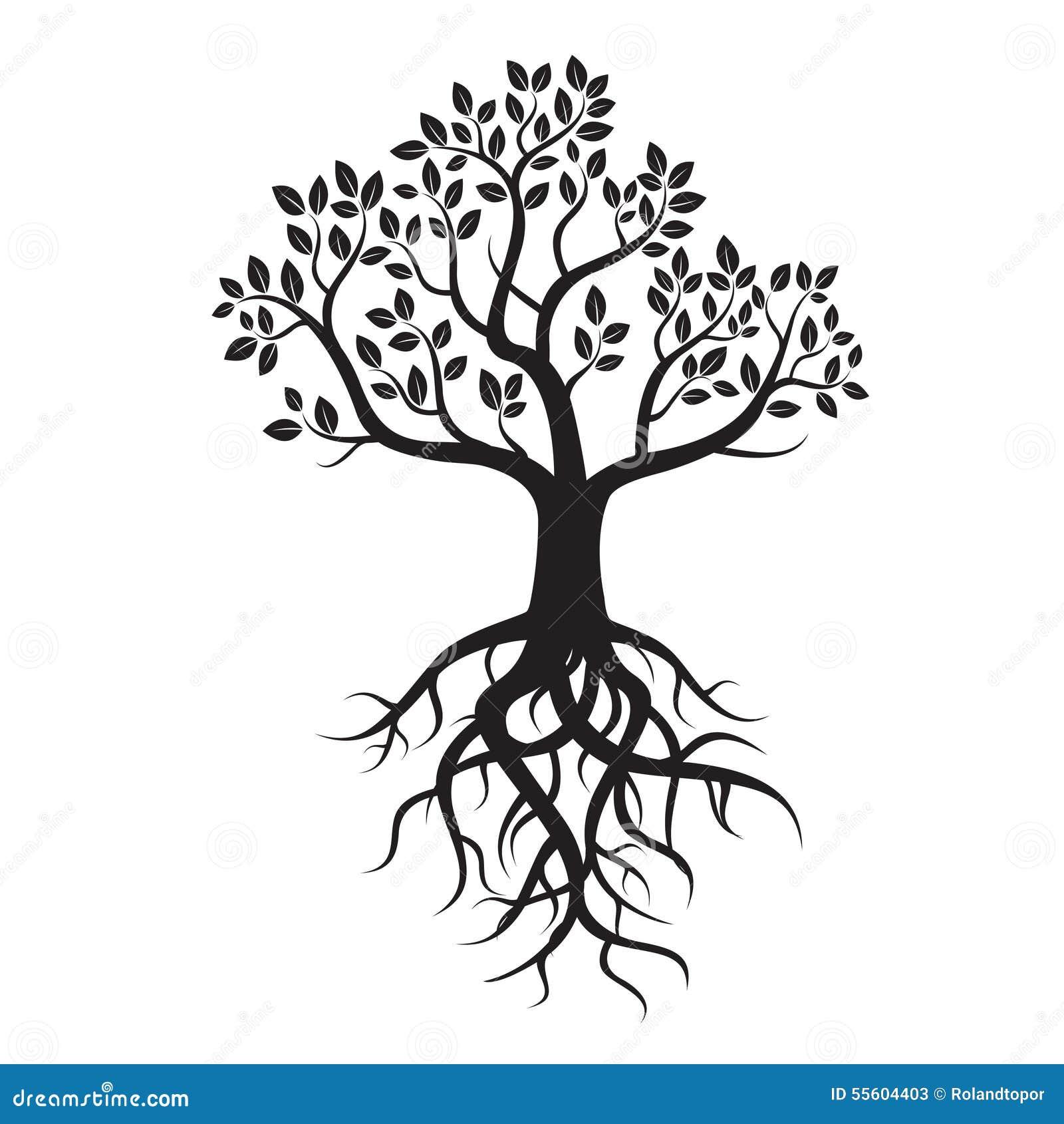 zwarte boom en wortels stock illustratie afbeelding