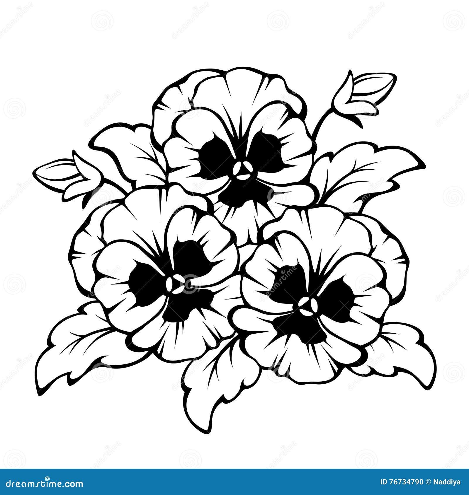 Zwarte contour van viooltjebloemen Vector illustratie
