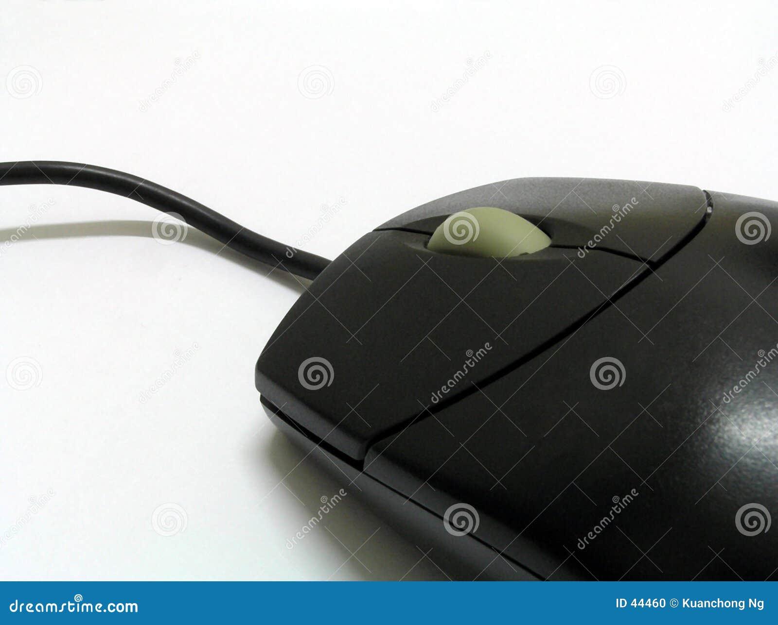 Download Zwarte Muis stock foto. Afbeelding bestaande uit technologie - 44460
