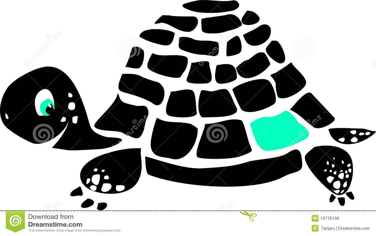 Zwarte schildpad